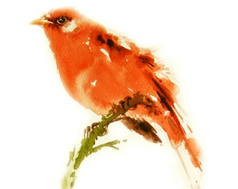 Red Warbler Bird  Painting , Bird watercolor painting, Art print size 8X11 inch for room décor and special gift  No.277
