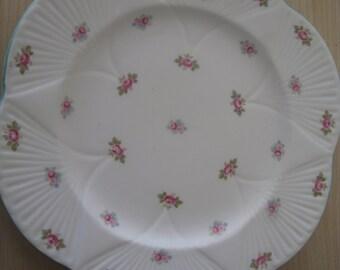 Shelley - Rosebud Dinner Plate