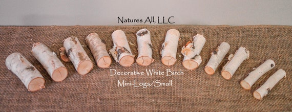 Decorative White Birch Mini-Logs/Small/12 Pc. Set/For Weddings And Home Décor/Shipping Included: Item# MLS-4910