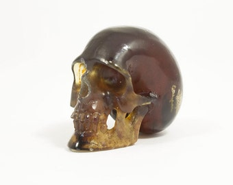 Amber Skull  -  stunning carving with realistic features  -  high quality Amber from Borneo
