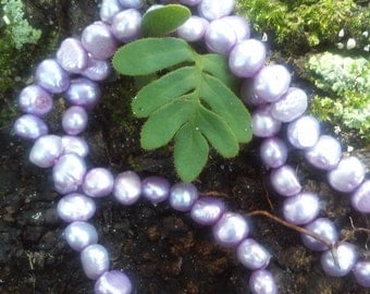 Lavender freshwater  nugget pearl strand, 75 FW pearls in strand