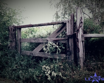 Rustic Gate with Flowers/Photograph of wooden gate and flowers, digital download,country scene,Australian photo,