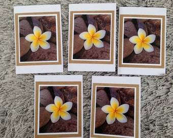 5 Frangipani cards