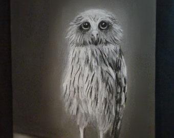 Original painting Pastel drawing Painting pastel Owl painting birds Owl gift Owl bird Art decor Owl mascot Bird painting Owl decor