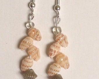 Hawaiian Shell Earrings