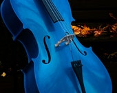 Cello Blue Cello Blue Cello in Autumn Still Life Fine Art Photography Blue Cello