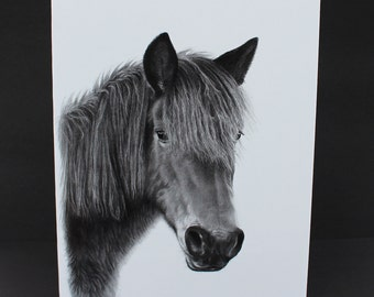 New Forest pony Black & White Card