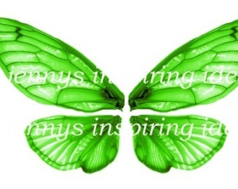 Green Cicada Wings