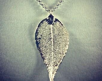 Beautiful 24-karat gold pendant sheet: Elm