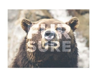 Fur Sure Print