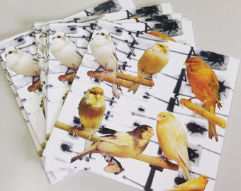Little Tweeters- blank greeting card