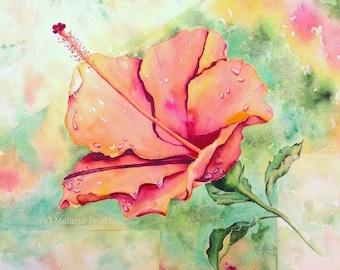 Tropical Hibiscus ORIGINAL 12x16 floral geometric pink orange Watercolor Painting by Melanie Pruitt EBSQ