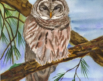 Owl Watercolor Note Cards Box of 10