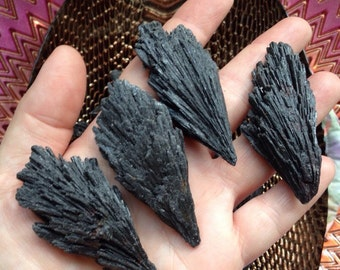 Black Kyanite Fans 1.5 ounces natural gemstone root chakra energy work