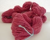APPLE TREES - 183 yards Handspun  Superwash Merino Worsted weight Yarn