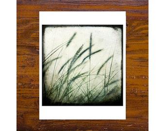 8x8 Print [JCP-013] - Grass #2