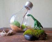 D.I.Y Recycled light bulb moss terrarium kit with long neck dino figurine by Nik da Pooh designs, hanging terrarium, recycled packaging