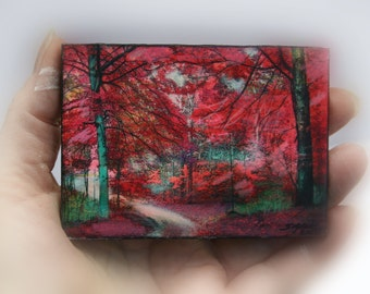 Autumn Beeches, Beech trees, Fall aceo, tree aceo, aceo original, red decor, nature photography, little gifts #Miniature tree art