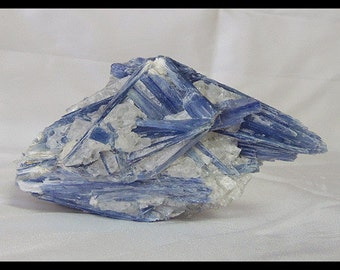 Blue Kyanite Blades in Quartz Crystal Dream Stone Metaphysical Energy Chakra Balancing Meditation
