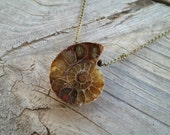 simple ammonite pendant // nickel free jewelry // HEY117