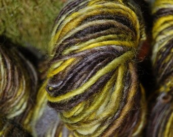 Handspun yarn, handpainted BFL wool yarn, handmade yarn worsted  multiple skeins available-Haint