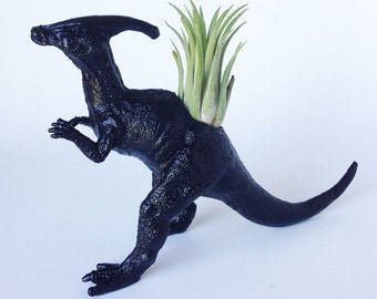 Dinosaur Planter with Air Plant Room Decor, College Dorm Ornament, Toy Planter, Black Tillandsia Pot