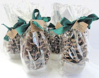 25 Pinecone Fire Starter Winter Wedding Party Favor - Emerald Green Wedding Favor Table Decoration Personalized Party Favor by Nature Favors
