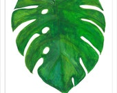 monstera plant  flower print watercolour art decor home ink graphic poster