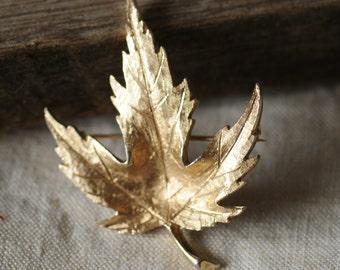 vintage signed Avon fall leaf brooch in gold