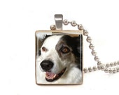 Personalized Pet Photo - Scrabble Tile Necklace - Free Necklace Chain Included