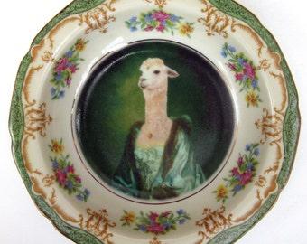 """Portrait Bowl.  Imperatrice Vicugna 5.5"""""""