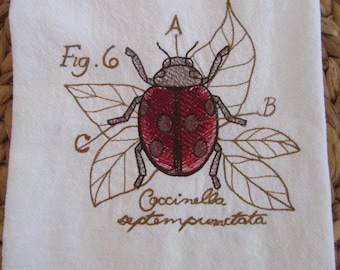 Lady Bug Diagram - Kitchen Flour Sack Towel - Gourmet - Natural Cotton