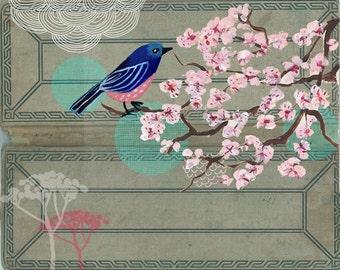 Cherry Blossoms 11 x 14 Art Print