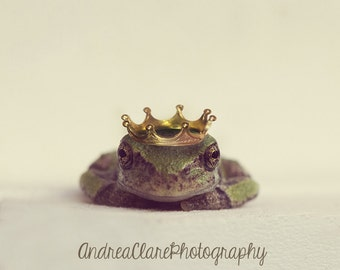 The Frog Prince, Fine Art Photograph, Photography, Photo, Print, Frog, Green, Prince, Crown, Nursery, Fairy Tale, Animal, Kids, Room, Art