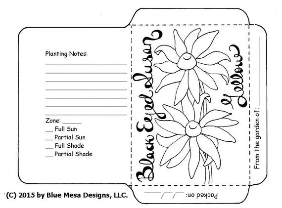Seed packet template black eyed susans hand lettering for Blank seed packet template