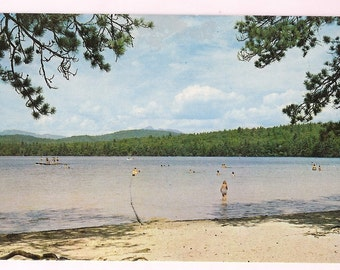 White Lake State Park Tamworth New Hampshire Vintage Postcard - NH Summer at the Lake Scene for a Lake Theme Decor