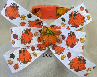 Dog Collar Pumpkins and Green Vines w Pumpkin Ribbon Bow Adjustable Collars D Ring Choose Size Pet Pets Everyday Accessory Halloween Fall