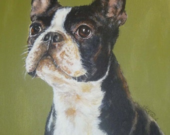 Boston terrier, Reproduction on paper of my original painting