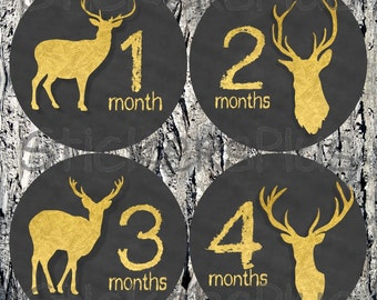 Baby Month Stickers Monthly Baby Milestone Stickers Baby Bodysuit Stickers Plus Gift Neutral Boy Girl Deer Head Antlers Hunter Chalk Gold