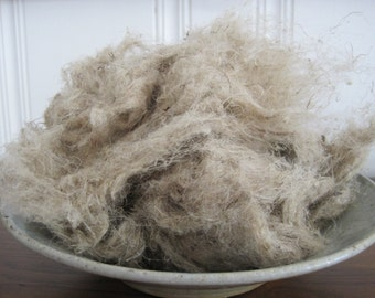 Raw nettle fiber