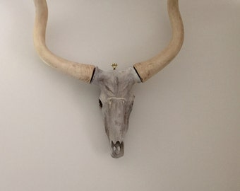 Faux Steer Taxidermy