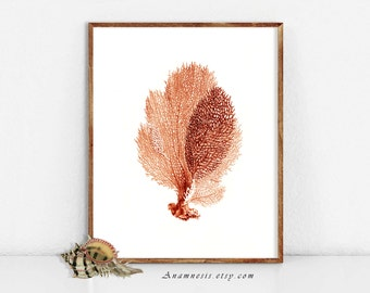 SEA CORAL in CORAL- High Res Digital Image - printable antique ocean illustration retooled by Anamnesis - image transfer - totes, pillows