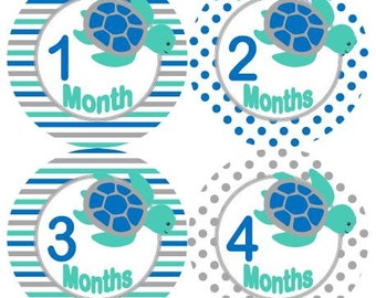 Baby Monthly Milestone Growth Stickers in Teal Blue Grey Sea Turtles Nursery Theme MS585 Baby Shower Gift Baby Photo Prop