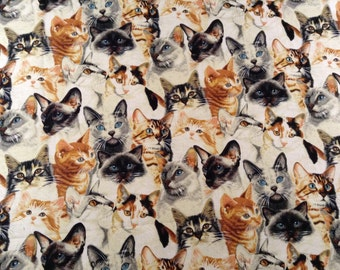 Beautiful Cats by Fabric Traditions, Cotton Fabric, Half Yard