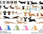 Flyball dogs part 2 digital clip art for Personal and Commercial use - INSTANT DOWNLOAD