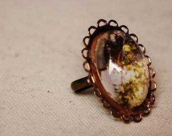 Glass Tree Ring