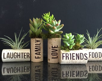 5 personalized air plant cork magnets with burning technique Living decor- magnets Tillandsia air plant or succulent// unique valentine gift