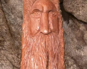 Wood Spirit in Cottonwood Bark