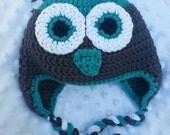 Crocheted Owl Hat, Crocheted Owl Beanie, Owl Hat, Owl Beanie, Crochet Hat, Crochet Beanie, Animal Hat, Custom Hat, Baby Hat, Child Hat