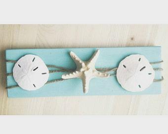 Aqua Starfish & Sand Dollar Beach Decor